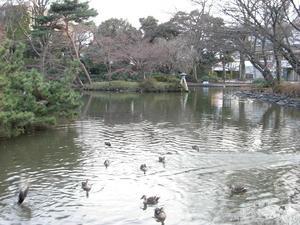 arisugawa00.JPG