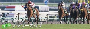 furawa-c08.JPG