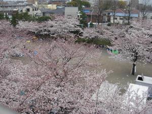 kawasakinago0902.JPG